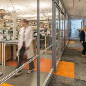 Dana-Farber Cancer Institute, L3 Chemistry Laboratory Project